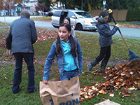 Clearing Leaves