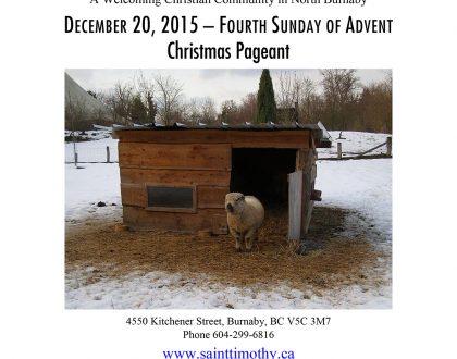 Bulletin: December 20, 2015